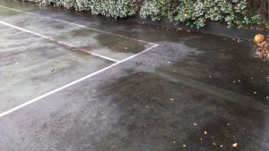 Mouldy court before cleaning